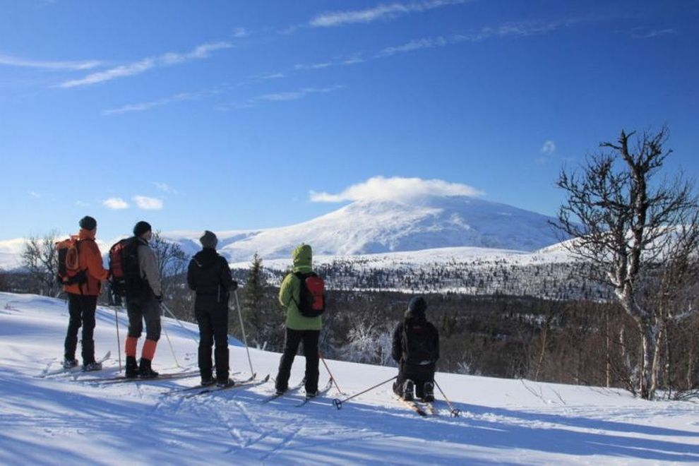WILDERNESS TOURS: Backcountry-Skiing in Norway (picture)