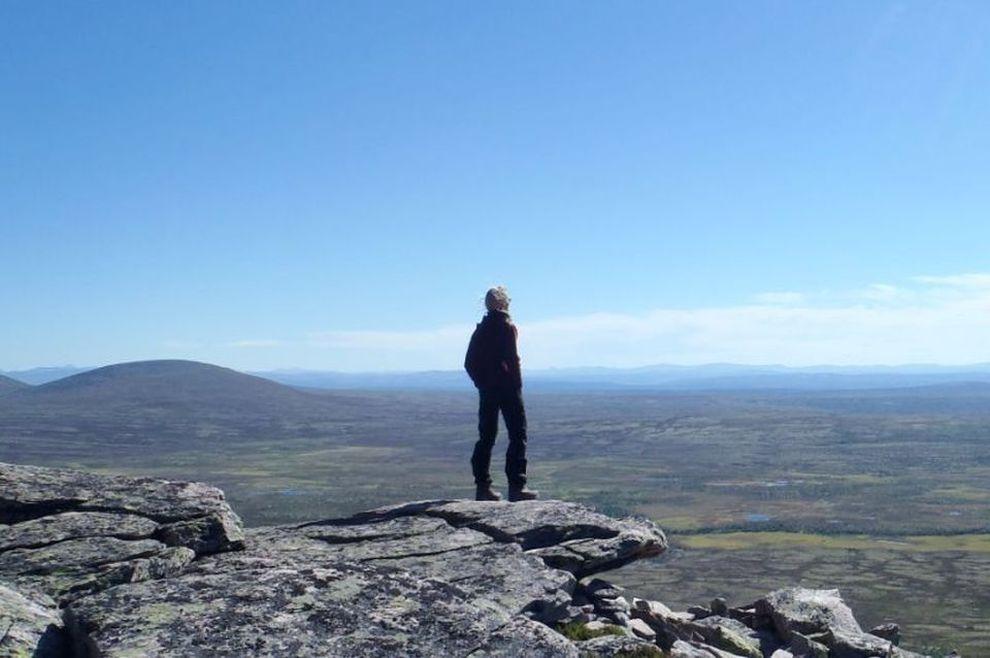 VILLMARKSTURER: skreddersydde naturopplevelser i Røros regionen (bilde)