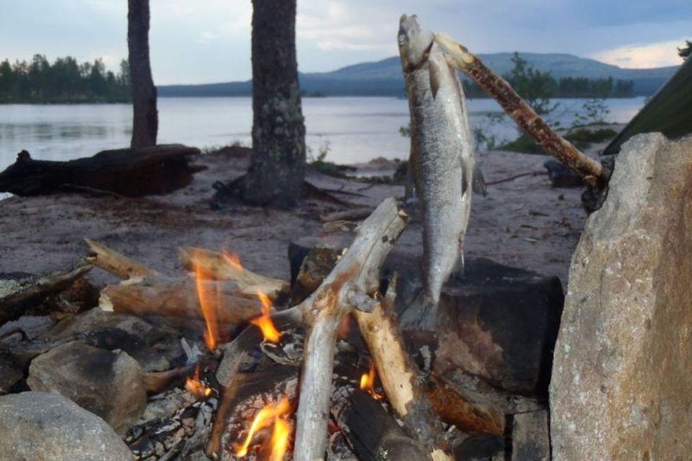 Kano vandring: skitt fiske – fisk på bålet (bilde)