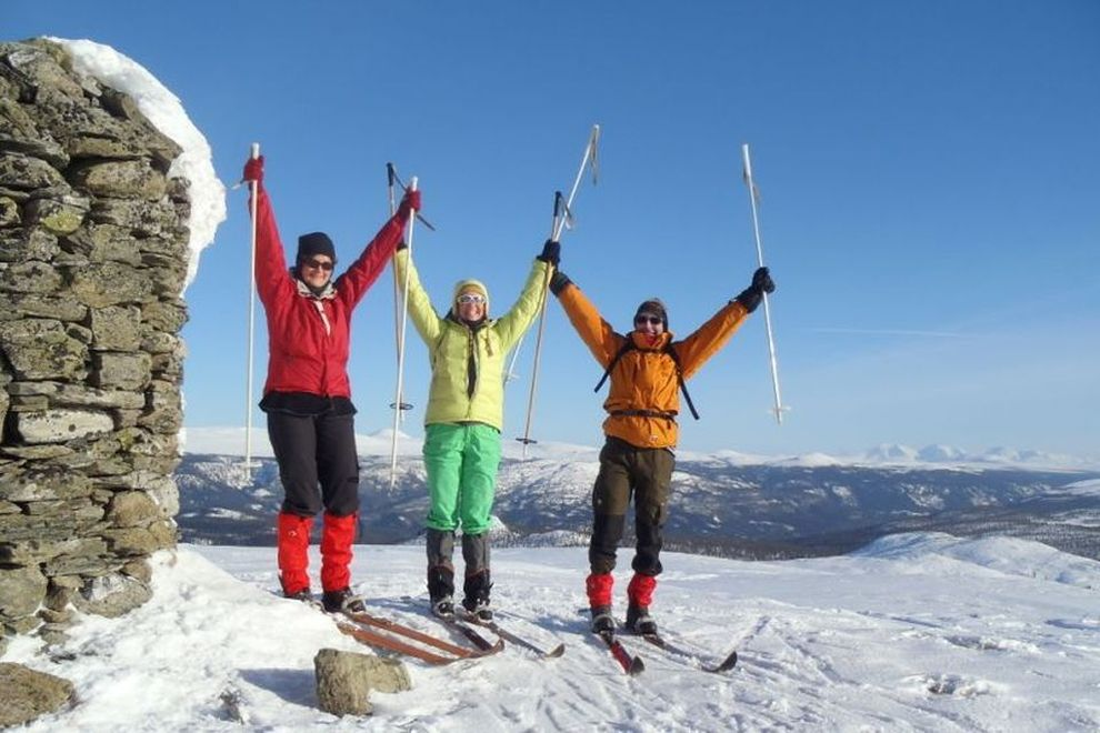 Backcountry Skiing: Skitour on a Mountain Top (picture)