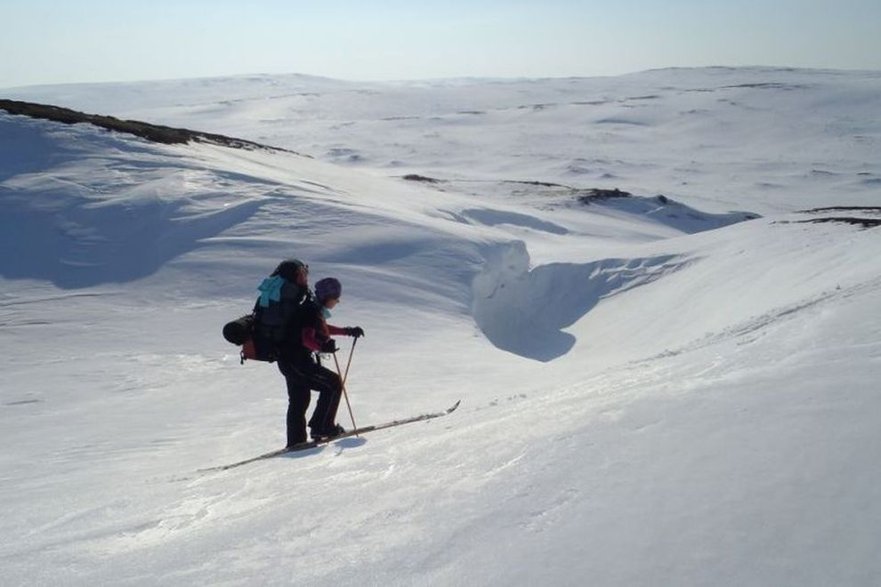 Backcountry Ski Trekking Tour: Winter Adventure and Wilderness Experience (picture)