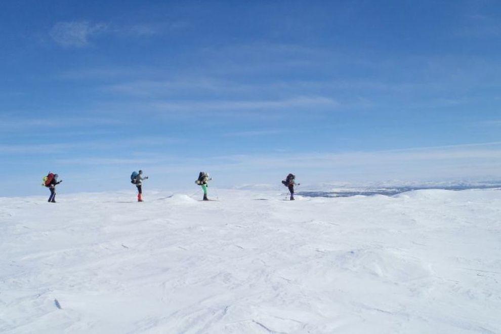 Skiwandern im Rentier-Land Forollhogna (Bild)