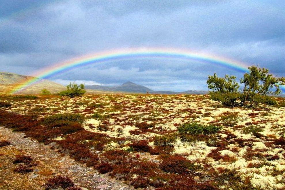 Villmarksturer: skreddersydde naturopplevelser (bilde)