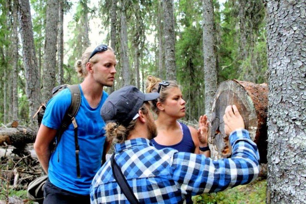 Bärencamp: Spurenlesen – Naturverbindung (Bild)