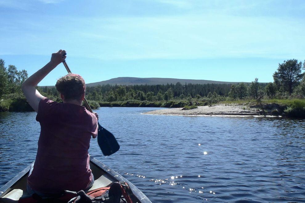 Padling Sommer Femundsmarka: Kanotur (bilde)