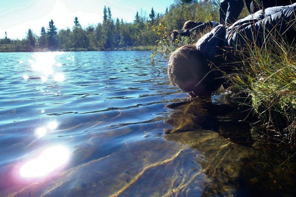 Naturmentoring: Naturverbundenheit leben (Bild)