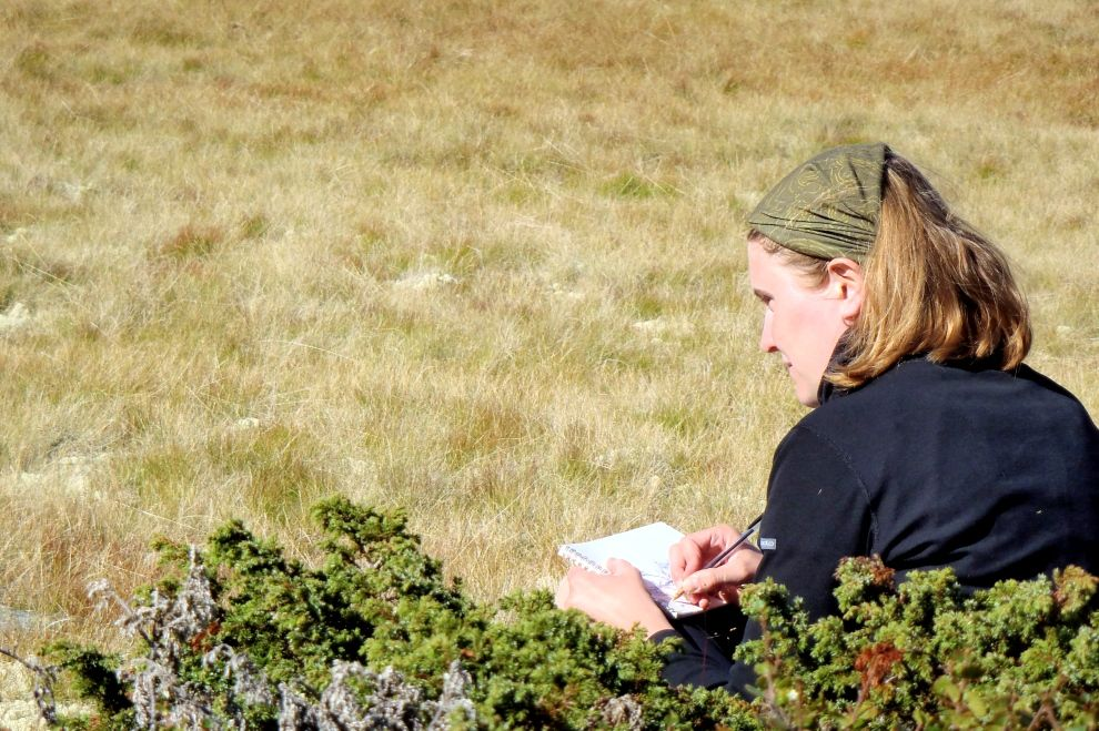Nature Mentoring: Observing nature and naturalist studies (picture)