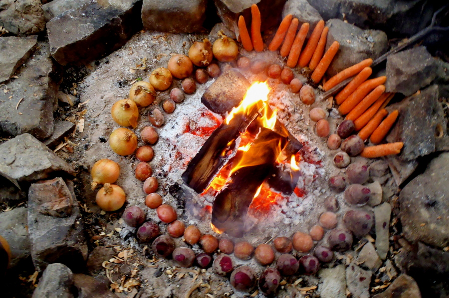 Back to the Wild: Primitive cooking on a campfire (picture)