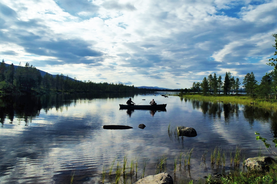 Wilderness immersion: Self experience in Norway (picture)