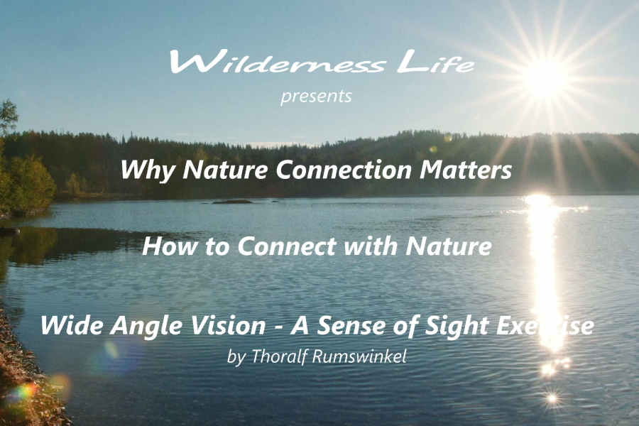 Wilderness Life: Nature Connection Videos (picture)